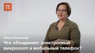 Исследование структуры мембранных белков — Ольга Соколова