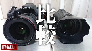 【一眼 Vs ビデオカメラ】今さら比較してみたが元の鞘に収まった件|Canon EOS 70D Vs IVIS HF G10