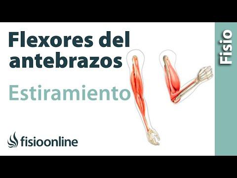 Tratamiento de la osteoporosis difusa de la articulación de la rodilla