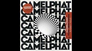 CamelPhat Feat Jem Cooke   Rabbit Hole (Monkey Safari's Attention Mix)