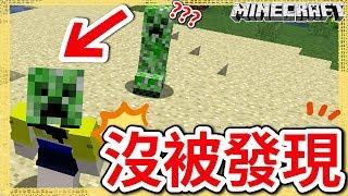 Minecraft |茶杯Ep203 實驗!戴著苦力怕頭不會被發現?!