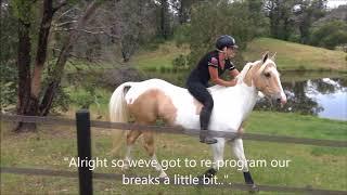Trail Riding training with no gear. Goldrush & Alycia Burton