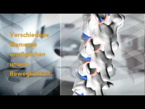 Behandlung der Wirbelgelenke bei Rückenschmerzen