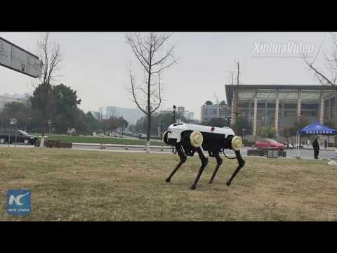 China unveils new four-legged robot that gallops like a horse
