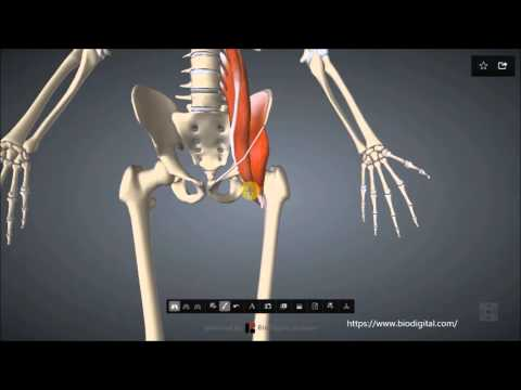 Arthrose des Kiefergelenks Behandlung Moskau