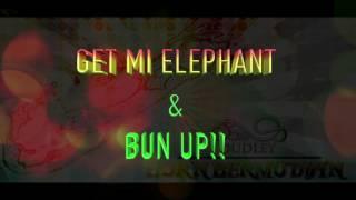 Born Bermudian Lyric Video