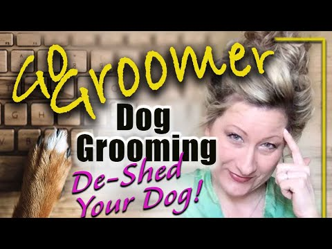 Dog Grooming-De-shed your dog