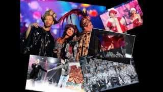 Chanteurs Divers - Les Enfoirés 2013