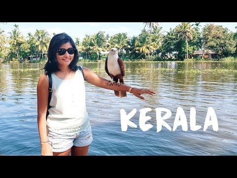 Download KERALA TRAVEL VLOG | Exploring Kochi and Alleppey HD Mp4 3GP Video and MP3