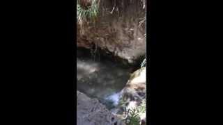 preview picture of video 'شلال صغير في وادي الراجب، عجلون، الأردن'