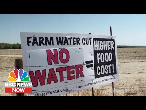 Water Shortages: An Overlooked Effect Of The Climate Crisis | NBC News Now