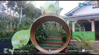Agrowisata Jollong, Destinasi Wisata Pegunungan di Kota Pati