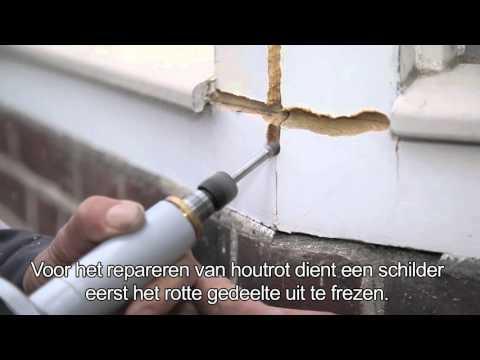 Houtrotfrees NL