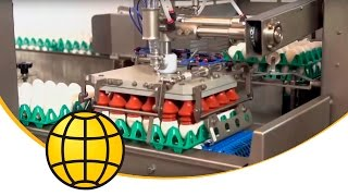 Egg Loader Machine - ✔️ Egg Breaking ✔️ Egg Grading - FlexLoader 5-6 With Destacker  - SANOVO