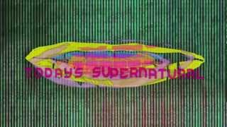 Animal Collective - Today's Supernatural (Official Audio)