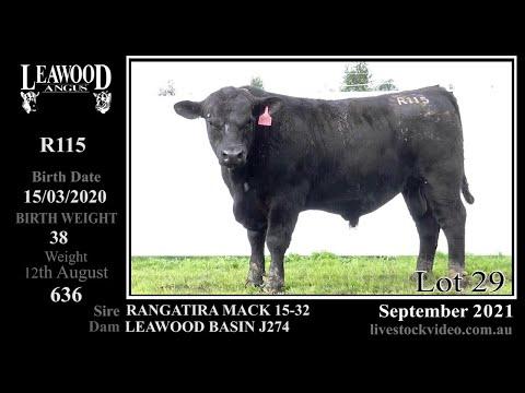 LEAWOOD MACK R115 (AI)