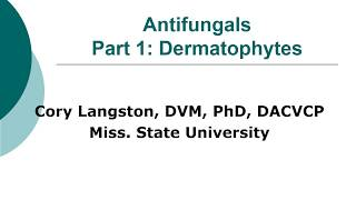 Antifungal Therapy in Veterinary Medicine, Part 1: Dermatophytes