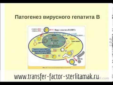 Артериальная гипертензия воспалительные заболевания печени