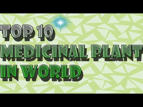 Video TOP 10 MEDICINAL PLANTS IN THE WORLD AND THIER USES