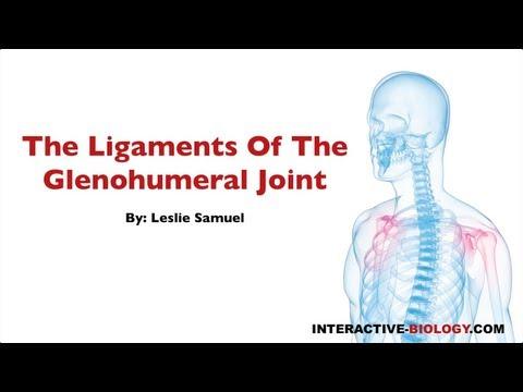 Inferiore pomata mal di schiena per il trattamento del dolore