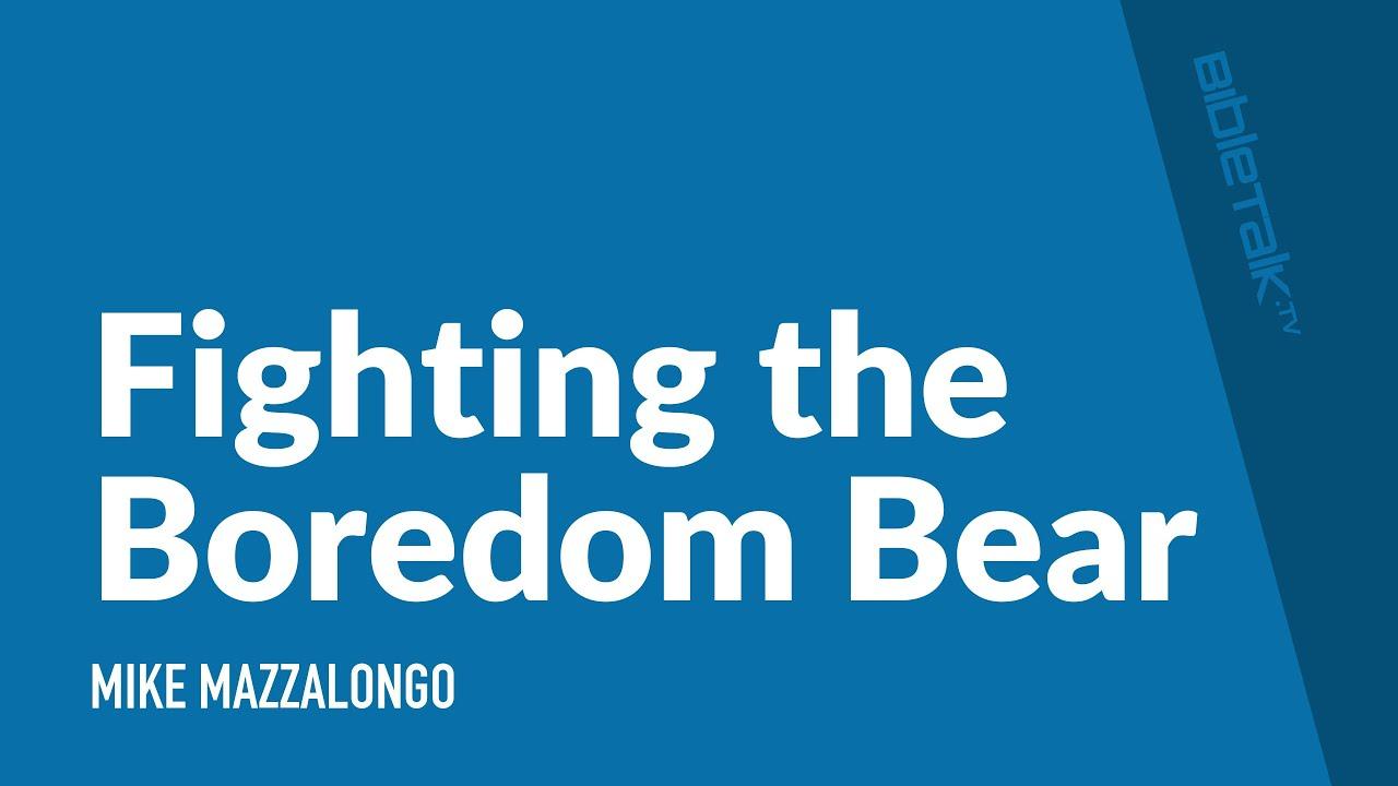Fighting the Boredom Bear