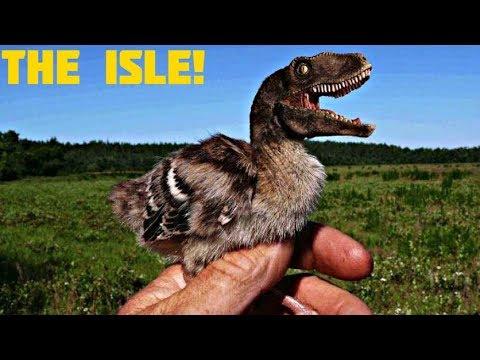 dinozaurii au viziune miopie pseudo