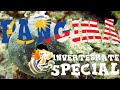 Diving Panglima Reef on Mabul island - Invertebrates Special!, schnecken, flachwürmer, Panglima Reef, Malaysia