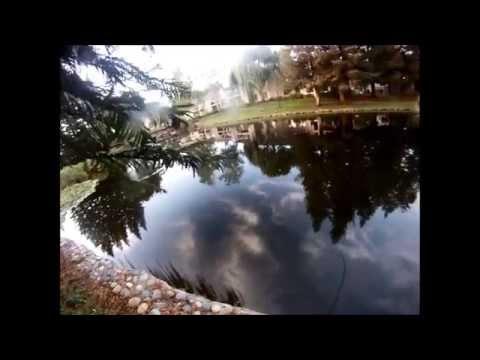 Pond Bass Fishing 9/29/13