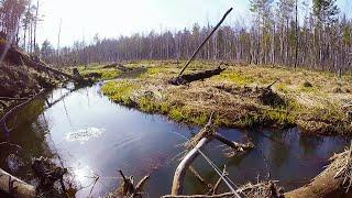 Рыбалки спиннингом щуки на малых реках