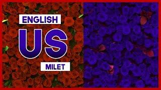 "【mew】""us"" by milet ║ Fake Affair Theme Song ║ Full ENGLISH Cover & Lyrics"
