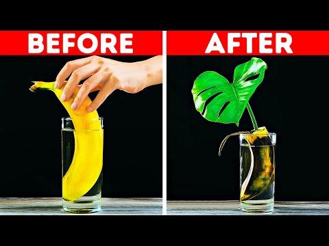 28 Nifty Banana Hacks and Tricks Everyone Could Use