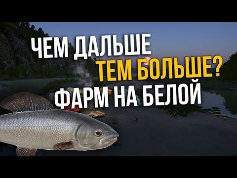 Фарм серебра на реке Белая