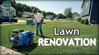 My Lawn Renovation Starts NOW!