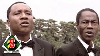 Africando - Carpintero (feat. Ronnie Baro) [Clip Officiel]
