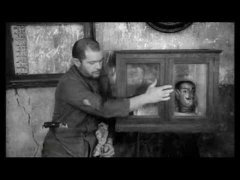 º× Watch Full Walerian Borowczyk Collection (The Beast/ Goto Island of Love/ Love Rites)