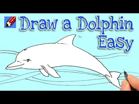 How To Draw A Whale Shoo Rayner Author