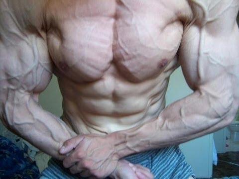 Létude sur lextension des muscles