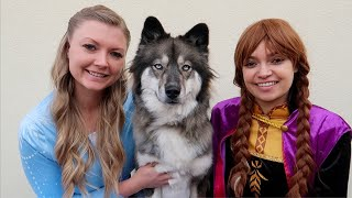 Kakoas Favorite Stories With Frozen Elsa & Anna!