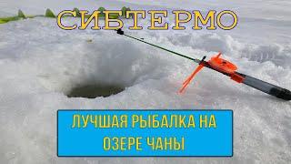 Отчеты о рыбалке на чанах