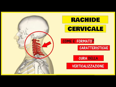 Esercizi con video osteocondrosi cervicale