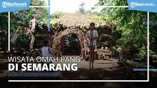 Wisata Omah Pang di Desa Wisata Nongkosawit Semarang, Bentuk Kreasi dari Ranting Pohon Jati