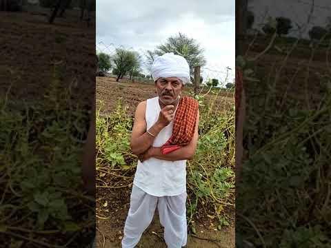 patriotic farmer