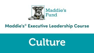 Maddie's Executive Leadership Course: Culture