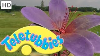 Teletubbies: Colours: Purple - Full Episode