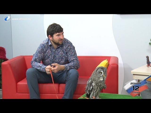 Гость программы «Новый день»:  Михаил Кабаков