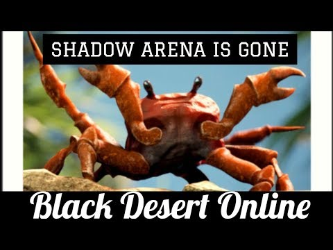 Black Desert Online [BDO] The End of Shadow Arena