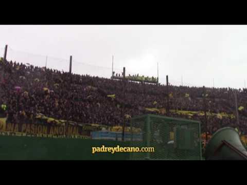 """""""""""La gallina ya no puede decir nada"""" - Hinchada de Peñarol"""" Barra: Barra Amsterdam • Club: Peñarol"""