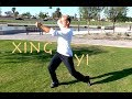 Incredible Kung Fu KATA - So Badass - Xing Yi Quan - Hsing I Chuan video download