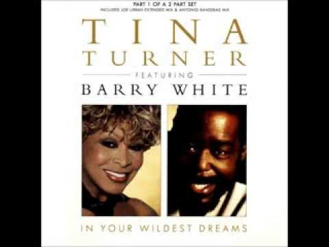 Tina Turner & Barry White   In Your Wildest Dreams 1996