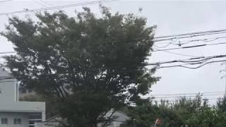 【台風24号】2018年09月30日 13時頃の福岡市の様子(管理者撮影)